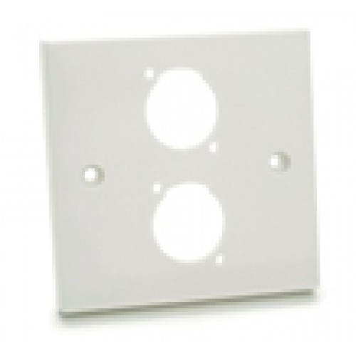 WP-1620 Raised Plastic Wallplate with 2 D cutouts.